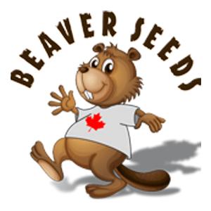 beaver-seeds